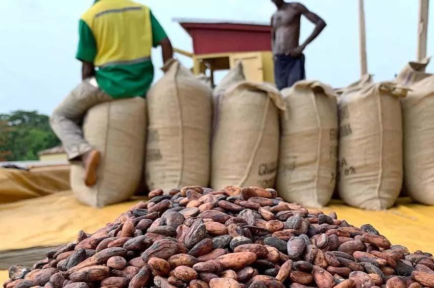 Des résultats riches sur le SERP de Google lors de la recherche de « café cacao »