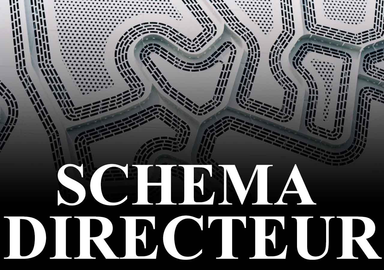 Rich results on Google's SERP when serching for 'schema directeur'